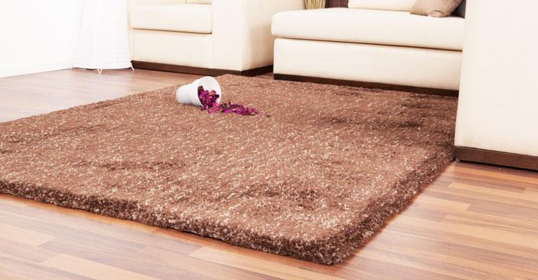 Primjer tepiha u dnevnoj sobi