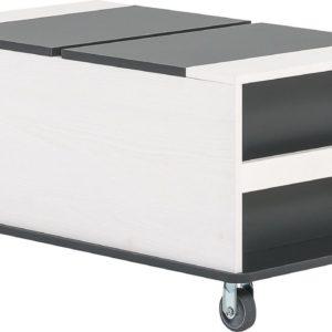 nizki zabojnik 52 x 92,5 x 45 cm